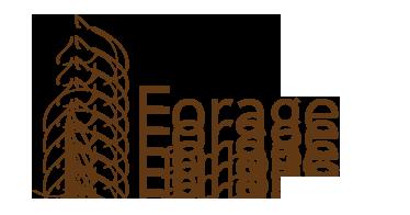 www.forageforhorses.com/en