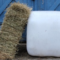 Hay, haylage, silage – what's the difference?